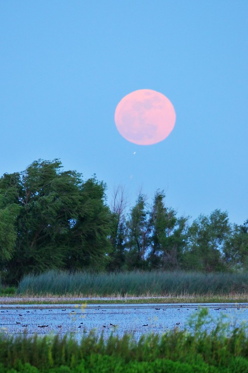 SuperMoon5-4-2012-XL.jpg